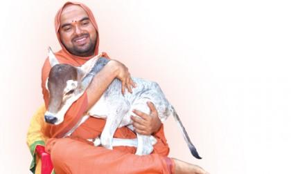 """Declare Cow and its progeny National Animal"" –Sri Sri Raghaveshwara Bharati"